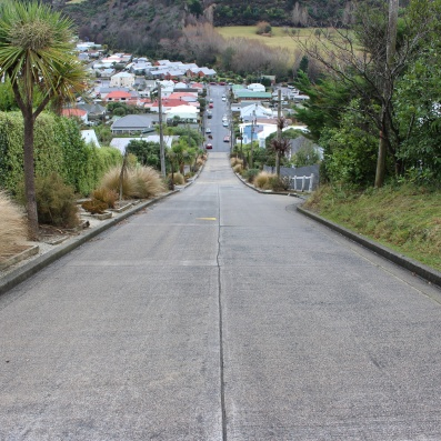 Baldwin Street, the world's steepest residential street